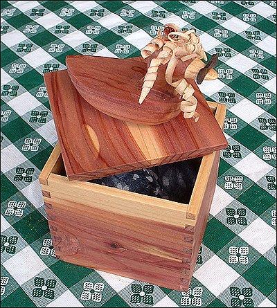 Duck Box