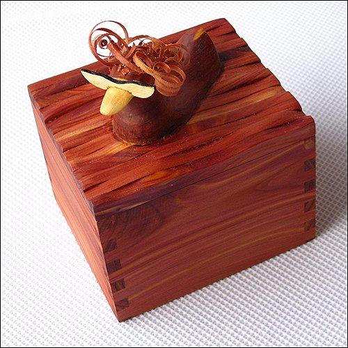 Duck Box 2